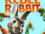 Peter Rabbit (film)