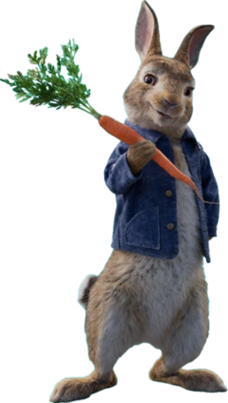 Peter Rabbit Render.png