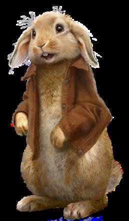 Benjamin Bunny.png