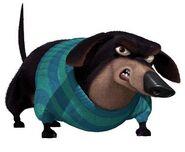 Mr. Weenie