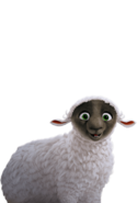 Character sheep