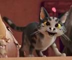 Cat (The Star)