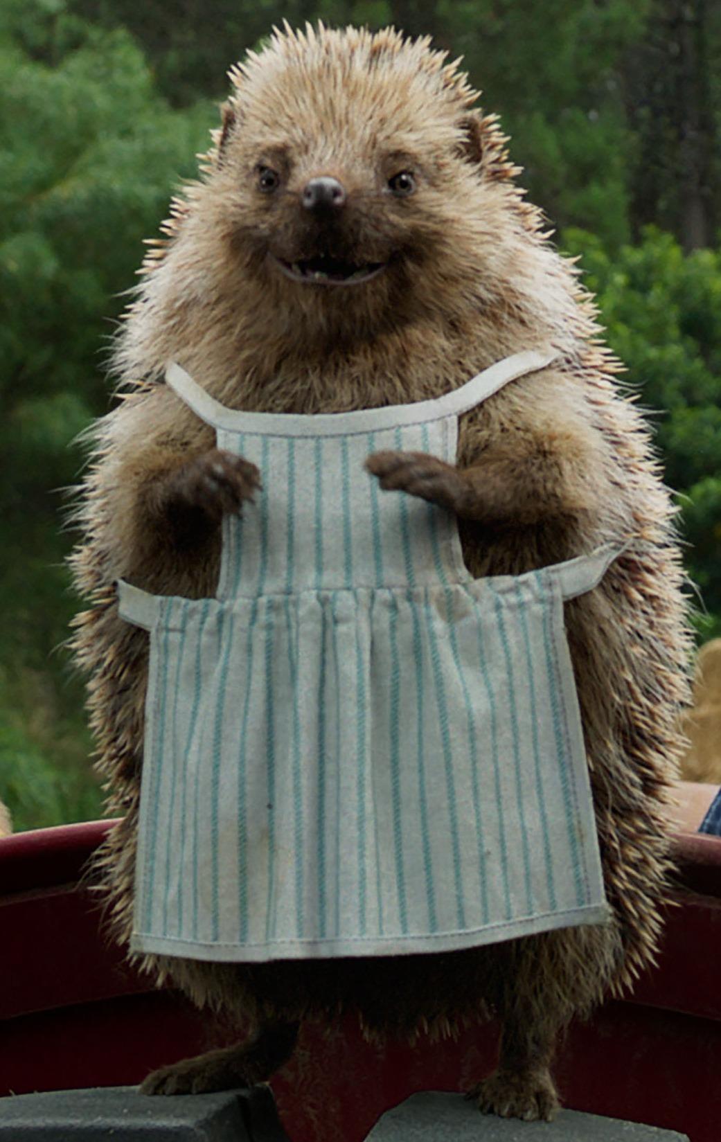 Mrs. Tiggy-Winkle