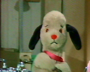 Sooty'sMagicSolutions17