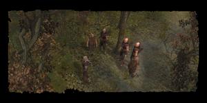 Geralt et le détachement de la Scoia'tael