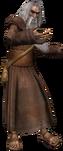 un vieux druide