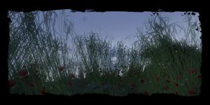 les champs la nuit