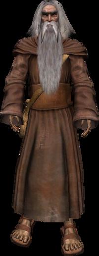 Vieux druide