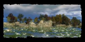 Île de l'Hirondelle Noire