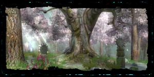 Bosquet des druides