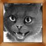 Puhelias kissa
