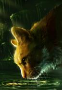 Leijonaroihu-KM2