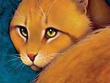 Leijonaroihu