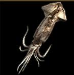 SCIV Giant Squid