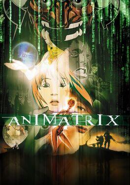 The Animatrix.jpg