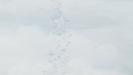 KonoSuba S1 Ep. 7 Hollywoodedge, Whistling Wind Mediu PE032901-Hollywoodedge, Wind Cold Whistle BT022801 (1)