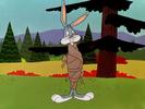 The Hasty Hare WB CARTOON, BOING - WACKY JEWS HARP BOING,