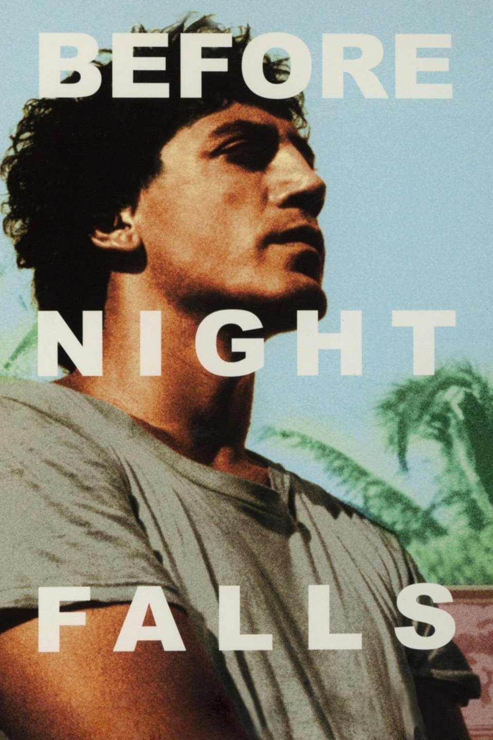 Before Night Falls (2000)
