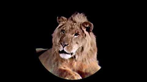 MGM Roar