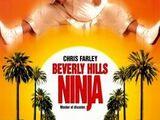 Beverly Hills Ninja (1997)