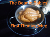 The Beanie Babies' First Thanksgiving (2020)