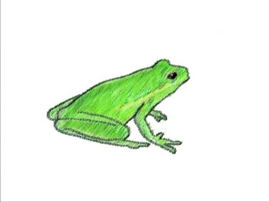 Sound Ideas, MARSH, NIGHT - CRICKETS, FROGS, AMBIENCE, SWAMP