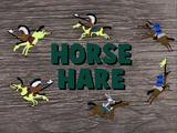 Horse Hare