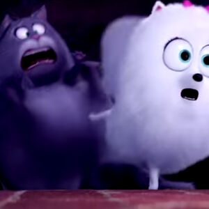 Cats Two Angry Yowls The Secret Life of Pets.jpg
