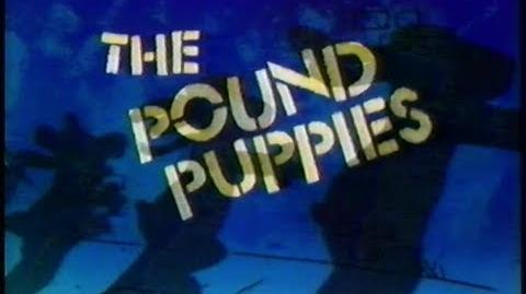 The Pound Puppies (1985)