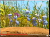 Zoog Disney Promo: A Bug's Life (2002)