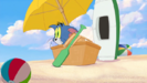 Tom and Jerry Spy Quest PLUCK, CARTOON - VAROOP