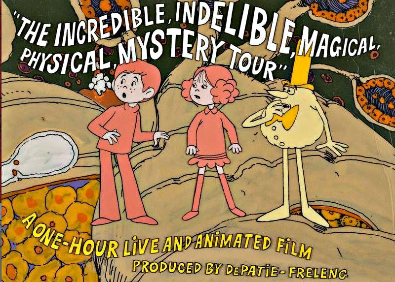 The Incredible, Indelible, Magical Physical, Mystery Trip (1973)