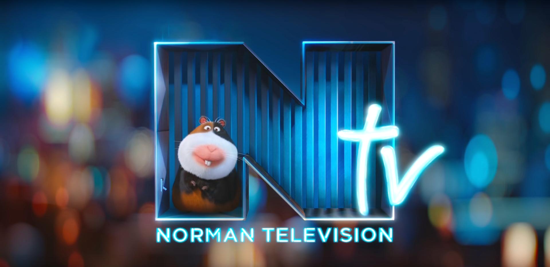Norman Television (2016) (Shorts)