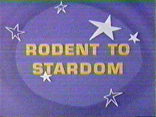 Rodent to Stardom (1967) (Short)
