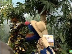Sesame Street Grover and the Elephant Sound Ideas, BIRD, PARROT - LARGE SINGLE CALL, ANIMAL (3).jpg