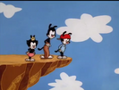 Animaniacs Sound Ideas, WHINE, CARTOON - SHELL SCREAMING WHINE DOWN, 2