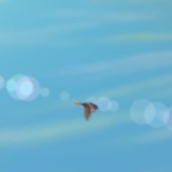 SKYWALKER, BIRD - SINGING CHIRP SOUND 01