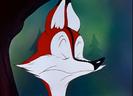 Fox Pop WB CARTOON, BOING - WACKY JEWS HARP BOING,