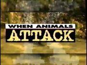 When Animals Attack 1996.jpg