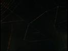 Charlotte's Web (2006) SKYWALKER, WHISTLE - SMALL FIREWORK WHISTLE 1
