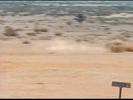 Zoom Hollywoodedge, Kick Fly Tumble Wbel CRT033801 (1st hit)