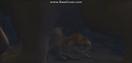 Ice Age (2002) Tiger Ferocious Roar (1)