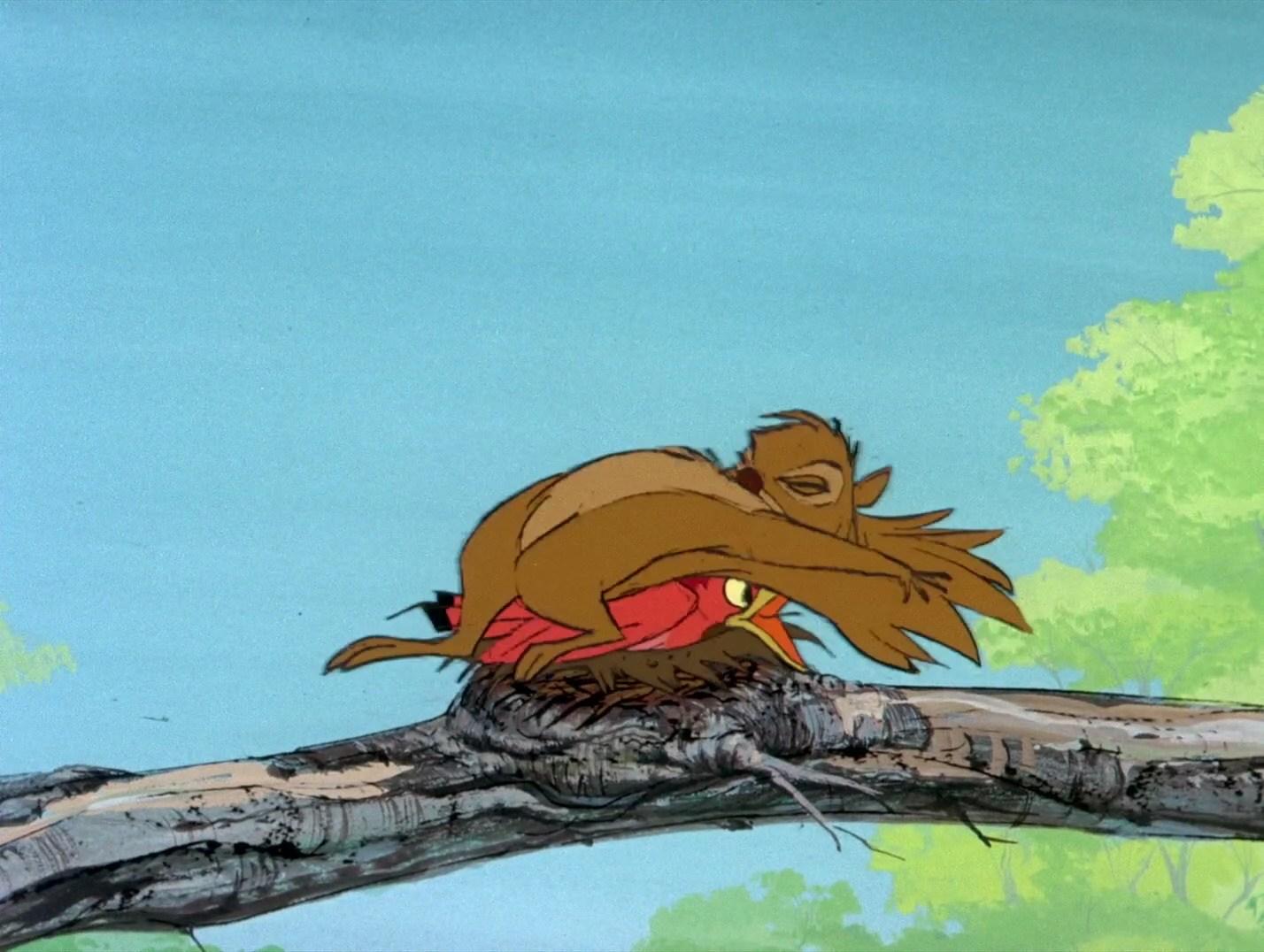 Disney - Cranky Bird