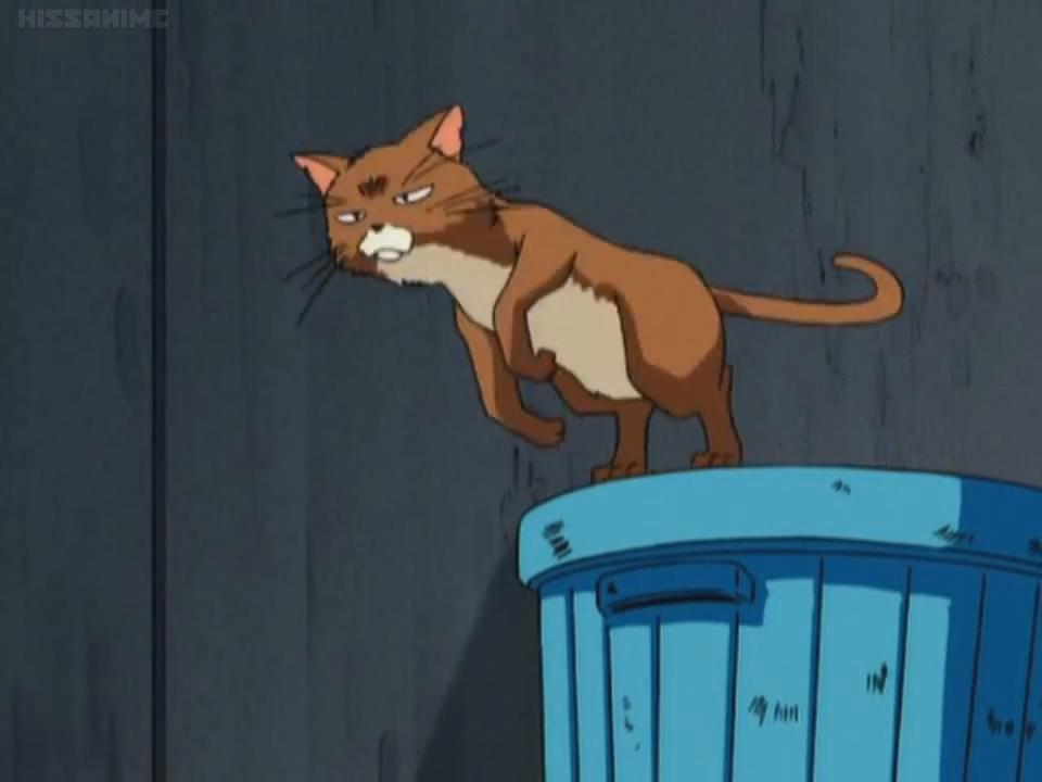 Anime Cat Meow Sound 2