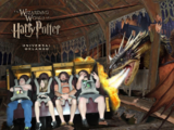 Harry Potter and the Forbidden Journey (Theme Parks)