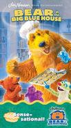 Bear in the Big Blue House: Sense-Sational! (2002)