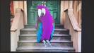 The Street We Live On Hollywoodedge, Bird Parrot VariousS PE021301