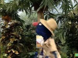 Sesame Street Grover and the Elephant Sound Ideas, BIRD, PARROT - LARGE SINGLE CALL, ANIMAL (4).jpg