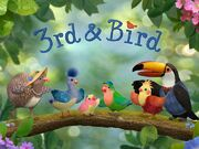 3rd and Bird Cover.jpg
