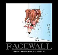 Facewall.jpg
